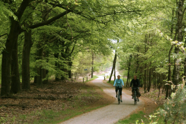 fietsers Sallandse Heuvelrug 3 - copyright Salland Marketing (1)